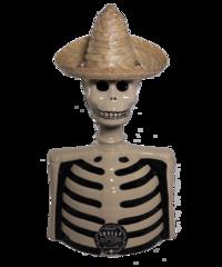 Los Azulejos Skeleto Skelly Reposado Tequila